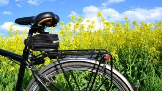 Fahrrad Andreas Hermsdorf Pixelio de